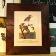 Custom framed Audubon print.