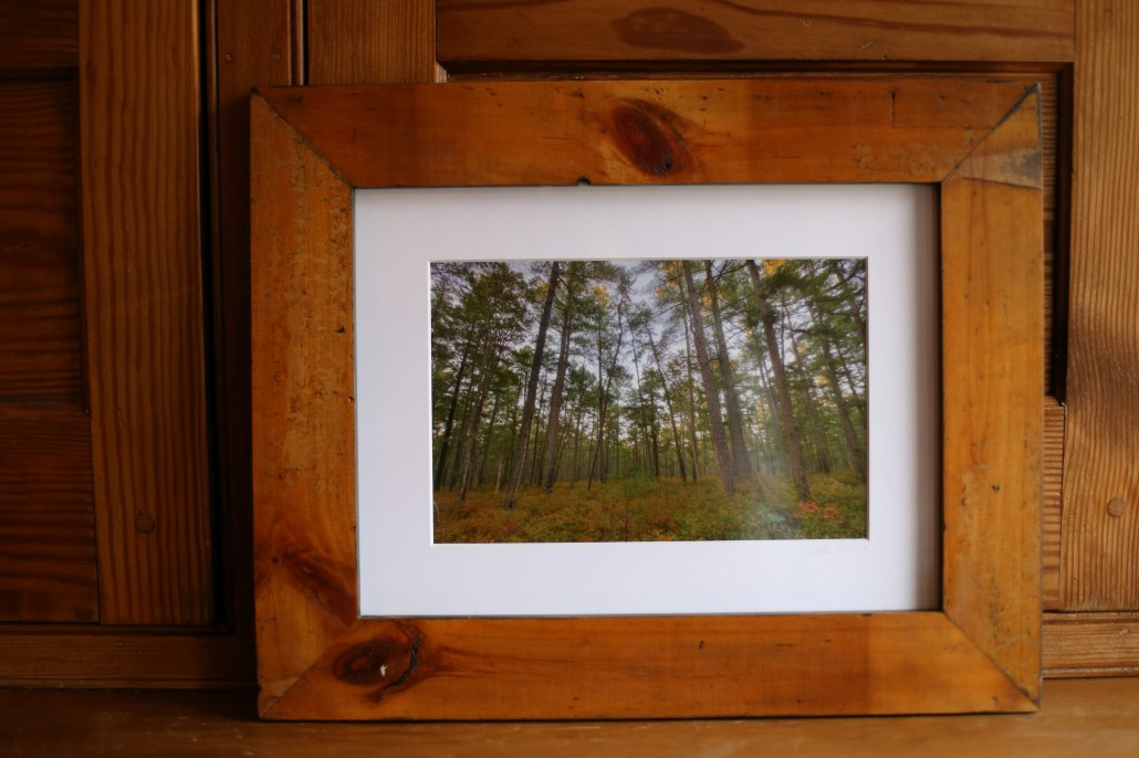 Pine stand framed in reclaimed pine. Fitting, right?
